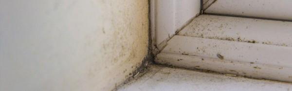 Condensation & ventilation